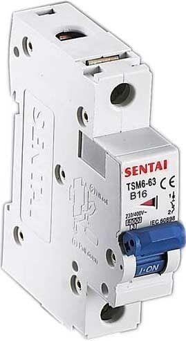 Jistič TSM6-63 230V/16A/B 1-fázový na DIN lištu