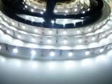 LED pásek vnitřní 300SB3 60LED/m 12V 12W/m bílá studená cena za 1m