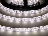 LED pásky 12W/m